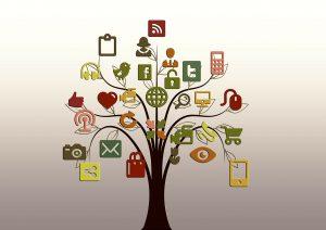 AM Digital Consulting Social media